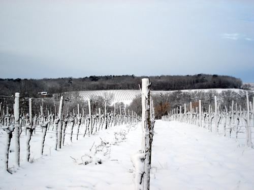 neige_03