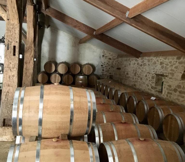 L'élevage de nos vins rouges : les étapes de notre travail et ses bienfaits